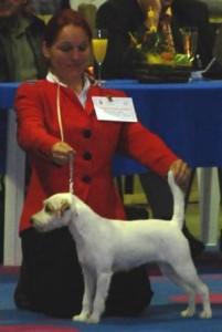 rednock2008-04